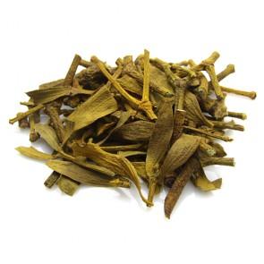 Mistletoe (Visci Herba)