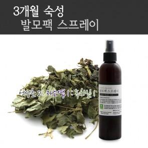 [한국산]  발모팩 스프레이 100ml -어성초 2 : 자소엽 1 : 녹차잎 1 ( 한정수량 )