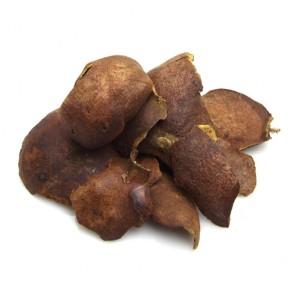 한국산l 석류피